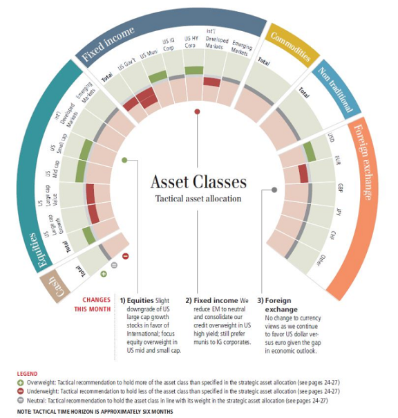 Multicolor infographic showing chagines in Assets