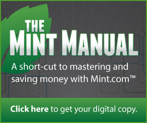 Green and Grey Mint Manual Banner